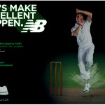 Dale Steyn NB  Excellence
