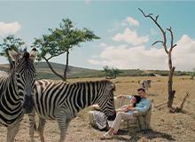 """Zolla """"Jungle Drum"""""""
